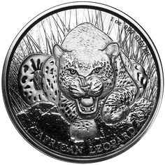 The 2017 Republic of Ghana African Leopard 1oz Silver Coin is the first release in the Republic of Ghana African Wildlife series of bullion coins.  The obverse design features an African leopard, perched on a rock in the long grass, waiting to pounce on its prey. The reverse of the coin bears the portrait of Her Majesty the Queen set on a leopard skin design background.  Each coin weighs 31.10g and is 999.0 Fine Silver. These coins are manufactured by Scottsdale Mint. Struck to bullion…