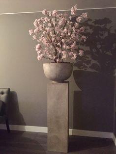 Prachtige roze bloesemboom in cement pot! Echt een sfeermaker in huis!