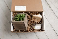 Sprout the gift of giving! Eco-friendly, natural gift boxes for various occasions. Every box includes a succulent or air plant and up to two personal gifts. Send caring wishes to a friend or loved one! Produce Bags, Party Kit, Save The Bees, Hampers, Sustainable Living, Air Plants, Gift Boxes, Giving, Washing Clothes