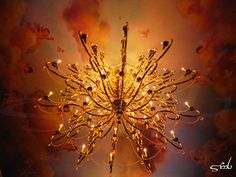 Be Our Guest- Ballroom Ceiling