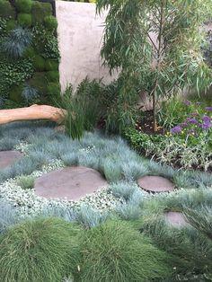 textured garden - Garden Care, Garden Design and Gardening Supplies Dry Garden, Garden Shrubs, Garden Paths, Shade Garden, Winter Garden, Australian Garden Design, Australian Native Garden, Back Gardens, Outdoor Gardens