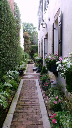 Narrow urban side yard