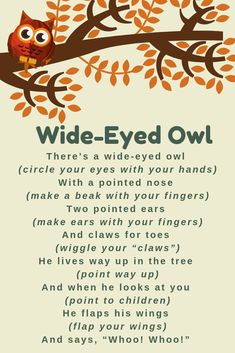 Wide-Eyed Owl Storytime Rhyme A great action rhyme for owls, forest animals, and fall! Owl Preschool, Preschool Poems, Kids Poems, Preschool Music, Preschool Learning, Teaching, Owl Activities, Circle Time Activities, Autumn Activities