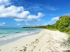 #Exotic #Caribbean #Wild #Beach - #Martinique    #Photography. Image 11137769.     http://www.123rf.com/photo_11137769_exotic-caribbean-wild-beach.html