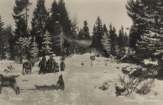 Sami winter camp, Sweden, postcard published 1925