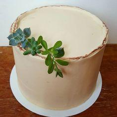 bolo com suclentas / succulents cake Grazing Food, Natural, Planter Pots, Diy, Cake, Male Birthday, Man Decor, Greenery Decor, Cake Ideas