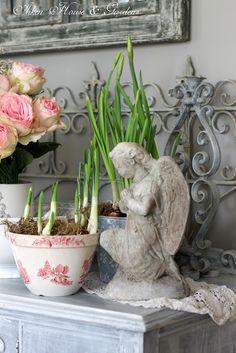 Aiken House & Gardens: Paperwhites in the Porch
