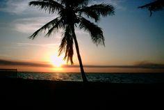 Punta Gorda, FL