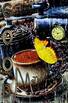 Morning Rose, Morning Morning, Good Morning Flowers, Good Morning Greetings, Good Morning Good Night, Good Morning Images, Morning Coffee, Positive Good Morning Quotes, Morning Love Quotes