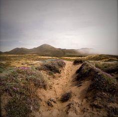 Dune trail, Montaña de Oro State Park, CA