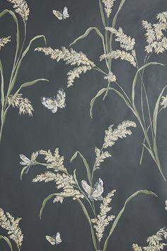 Slide View: 3: Tall Grass Wallpaper