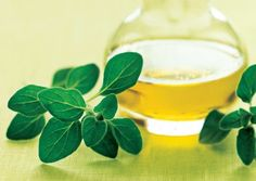Oregano is one of the world's most antioxidant-dense foods.One tablespoon of the fresh herb packs the same antioxidant punch as a medium-sized apple. Its high concentration of these plant compounds may help prevent cellular damage and reduce the risk of common killers such as cancer, heart disease, and hypertension. Oregano also has antimicrobial qualities. It contains thymol and carvacrol, strong antiseptics used in mouthwashes that inhibit growth of bacteria and fungi.