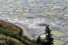 Spotted Lake near Osoyoos, British Columbia, Canada