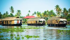 Explore Fascinating Kerala Holidays Tour in India. Kerala is popularly known to us as Gods Own Country. Turkey History, India Travel Guide, Hampi, India Tour, Travel Wallpaper, Tour Operator, South India, London Travel, Canada Travel