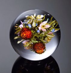 Glass Paperweights by Paul J. Stankard