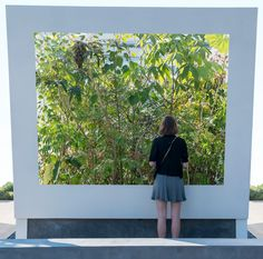 Sophie Walker / Cave Pavilion at Chelsea Flower Show 2014 / Photograph Bennet Smith