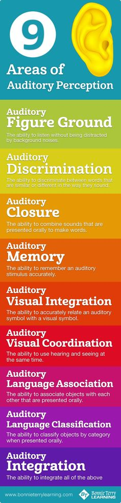 Areas of Auditory Processing / Perception