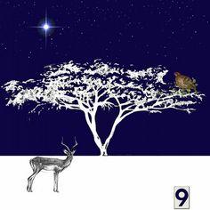 9th December - an oversized partridge in an acacia tree..... #juliettraversadventcalendar #christmas #acaciatree #patridgeinapeartree