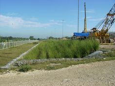 East Bali - Industrial site of Exxon-Mobile is protected from spills by vetiver grass hedges. Soil Conservation, Hedges, Bali, Grass, Around The Worlds, Industrial, House Styles, Garden, Plants