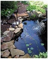 Free Water Garden and Koi Pond Building Guides and Project Plans - Build a beautiful pond in your backyard with these free how-to guides and do-it-yourself plans. Photo: Create a Water Garden with help from ExtremeHowTo.com