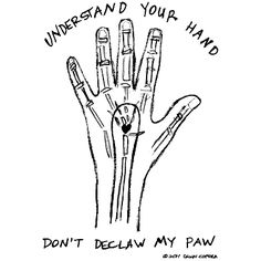 Understand your hand. Don't declaw my paw. ©2011 Dawn Coppola https://itunes.apple.com/us/album/catland/id613127976