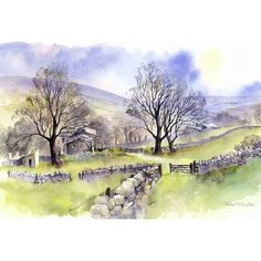 Farm in the Yorkshire Dales by Rachael McNaughton