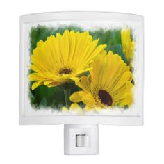 Yellow Daisies White Edge Nite Lights from Florals by Fred #zazzle #gift #photogift