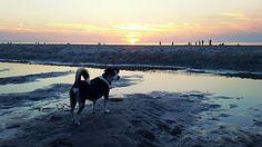 Sunset at de zandmotor 💛