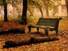 Old Seat HD Nature Wallpaper