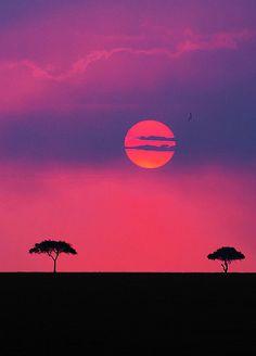 Sunset over the Maasai Mara Game Reserve in Kenya