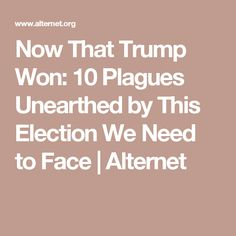 Now That Trump Won: 10 Plagues Unearthed by This Election We Need to Face | Alternet