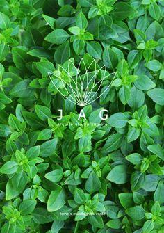 flyer, JAG, arquitetura paisagista