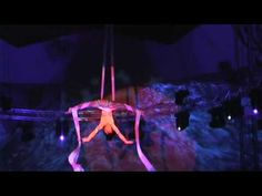 "My Aerial Silk act in Salto Natale's programme ""Elegance"" October, 2008- February, 2009 (Switzerland)"