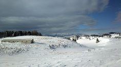 Lessinia - Da Bocca di Selva al monte Tomba - 2013 Foto di Alba Rigo