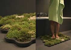 Tapete de Musgo que se alimenta das gotas de água que caem quando se sai do banho / Live Moss Carpet is a soft grass carpet that thrives from the few drops of water you leave behind when stepping out of the shower or bath. Moss Bath Mats, Grass Carpet, Grass Rug, Moss Grass, Green Furniture, Eco Furniture, Living Furniture, My New Room, Looks Cool