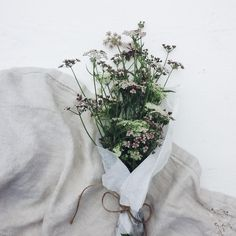 The beauty of simple gifts | Wildflowers from the woods Wildflower bouquet - Lilla Linaea instagram ___________________________ The lovely @moniquevdheuvel asked me to join the #flowerchallenge Thank you for thinking of me! I always love an excuse to post more flowers. Here is my 1/5