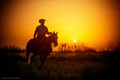 A good #horse, and a great sunrise. That's the recipe for a perfect morning. ☀️  #cowboylife |  Jeremy Enlow