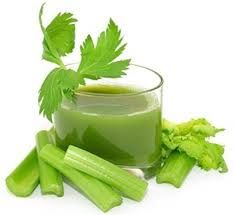 How Celery Juice Can Repair Your Gut by Restoring Stomach Acid (helpful for acid reflux, bloating, acne, autoimmune + more!) – Organic Olivia