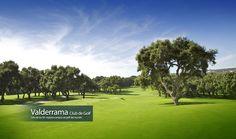 Valderrama Club de Golf, uno de los 50 mejores campos de golf del mundo.
