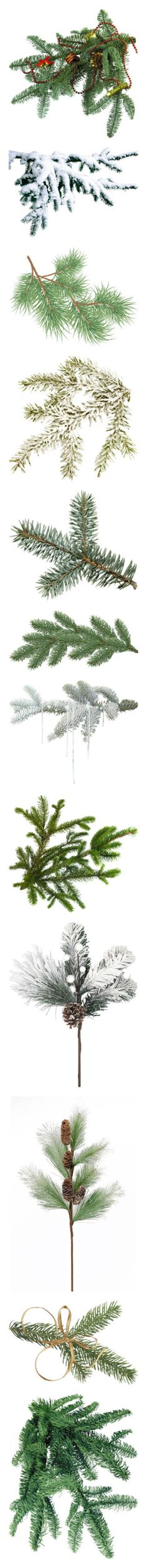 """""""Christmas 6 - picks, tubes, photos"""" by franceseattle ❤ liked on Polyvore featuring christmas, natale, winter, trees, backgrounds, snow, effect, xmas, filler and flowers/plants"""