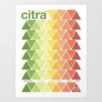 citra single hop Art Print by Committee On Opprobriations Wall Prints, Poster Prints, Art Print, Posters, Joseph Muller, Citra Hops, Pineapple Print, Logo Color, Creative Words