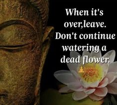 Sayings About Dead Flowers Wisdom Quotes, True Quotes, Words Quotes, Quotes To Live By, Sayings, Christ Quotes, Buddhist Wisdom, Buddhist Quotes, Buddha Quotes Inspirational
