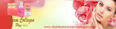 Distributor Resmi Cream Collagen Asli Original Plus Vitamin E Kami Menjual Cream Collagen Plus Vitamin E Asli Original Pemutih Wajah Kwalitas Terjamin #KamiMenjualCream #ResmiCream