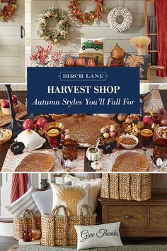 All our favorite fall styles are here in the Harvest Shop, ripe for the picking! Browse furniture, decor, and more — all with a distinctly autumn flair. See more at Birch Lane and enjoy Free Shipping on all orders over $49. Sign up now to learn more about our exclusive offerings!