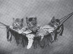 Harry Whittier Frees - Resting in the Hammock - Category:Harry Whittier Frees - Wikimedia Commons