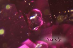 Crystal Inclusion in untreated Burmese ruby. Mori's ruby