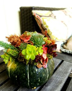 Fall decoration: pumpkin with succulents.  Design by www.rockybaygardencreations.com