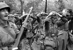 Prisoners. ... WW2. A U.S. Army soldier with his M1 Garand semi-automatic rifle leads surrendered German soldiers to a POW collection area following the liberation of Maastricht.  Maastricht, Limburg, Netherlands. September 1944.