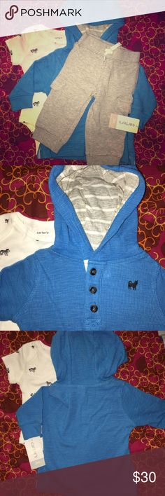 Carters Baby Boy 3pc. Outfit Hoodie Pants Onesie Brand new Carters Baby Boy set. No pieces have been worn or washed. I had a summer baby so he never wore these:) 3 pieces: blue hoodie, terry outer, cotton stripe gray and white inside, front pocket and buttons. Gray cargo jogger pants, functional pockets on legs. Cotton Onesie with husky dogs all over print. Super cute!! Carter's Matching Sets