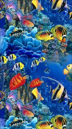 Sea Life Art, Sea Art, Ocean Wallpaper, Animal Wallpaper, Beautiful Sea Creatures, Animals Beautiful, Colorful Fish, Tropical Fish, Sea Murals